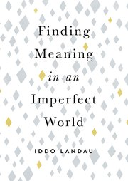 Cover for   Finding Meaning in an Imperfect World