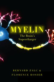 Cover for   Myelin