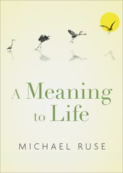 Cover for   A Meaning to Life