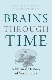 Cover for   Brains Through Time