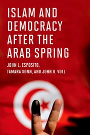 islam and democracy after the arab spring cover