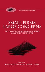 Cover for   Small Firms, Large Concerns