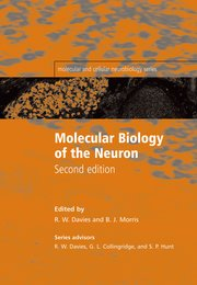 Cover for   Molecular Biology of the Neuron