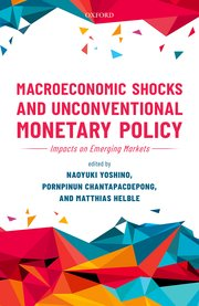 Cover for   Macroeconomic Shocks and Unconventional Monetary Policy