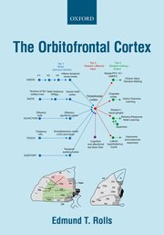 Cover for   The Orbitofrontal Cortex