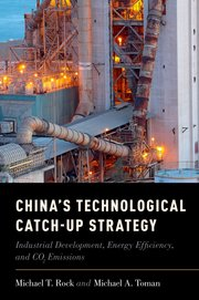 Cover for   Chinas Technological Catch-Up Strategy