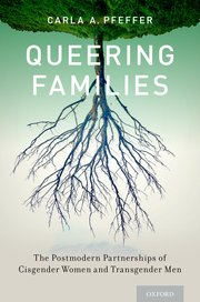 Cover for   Queering Families