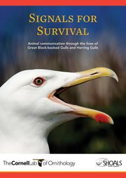 Cover for   Signals for Survival