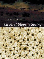 Cover for   The First Steps in Seeing
