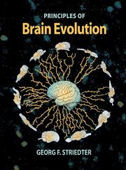 Cover for   Principles of Brain Evolution
