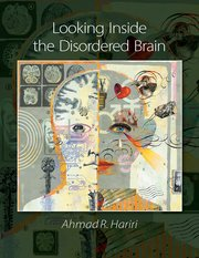Cover for   Looking Inside the Disordered Brain
