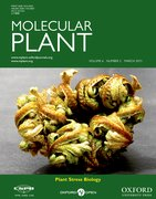 Cover for Molecular Plant