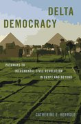 Cover for Delta Democracy