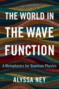 Cover for The World in the Wave Function