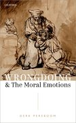 Cover for Wrongdoing and the Moral Emotions