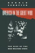 Cover for America in the Great War