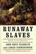 Cover for Runaway Slaves
