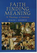 Cover for Faith Finding Meaning