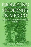 Cover for Producing Modernity in Mexico