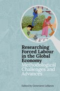 Cover for Researching Forced Labour in the Global Economy