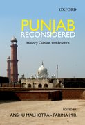 Cover for Punjab Reconsidered History, Culture, and Practice