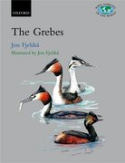 Cover for Grebes