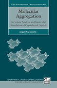 Cover for Molecular Aggregation