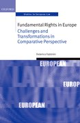 Cover for Fundamental Rights in Europe