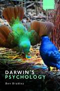 Cover for Darwin