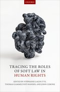 Cover for Tracing the Roles of Soft Law in Human Rights - 9780198791409