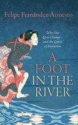 Cover for A Foot in the River