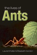 Cover for The Lives of Ants