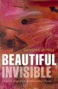 Cover for The Beautiful Invisible