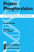 Cover for Protein Phosphorylation