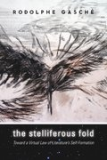 Cover for The Stelliferous Fold