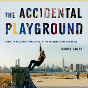 Cover for The Accidental Playground