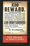 Cover for Irish Migrants in Modern Wales