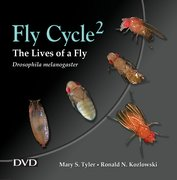 Cover for Fly Cycle 2