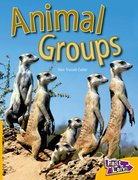 Cover for Animal Groups Fast Lane Yellow Non-Fiction