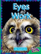 Cover for All About Eyes at Work Fast Lane Emerald Non-Fiction