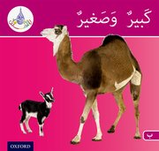 Cover for Arabic Club Readers: Pink Band: Big and Small