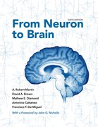 Cover for From Neuron to Brain
