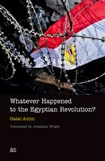 Cover for Whatever Happened to the Egyptian Revolution?