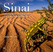 Cover for Sinai