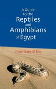 Cover for A Guide to Reptiles & Amphibians of Egypt
