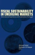 Cover for Fiscal Sustainability In Emerging Markets