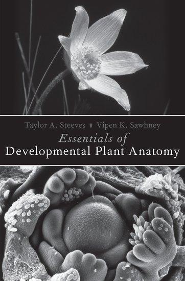 Essentials of developmental plant anatomy taylor a steeves essentials of developmental plant anatomy taylor a steeves vipen k sawhney oxford university press fandeluxe Choice Image
