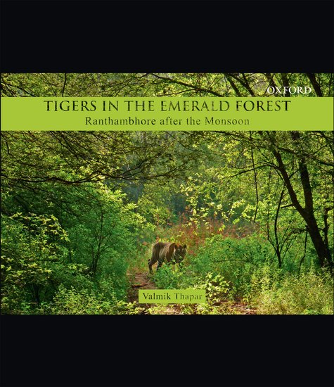 Tigers in the Emerald Forest