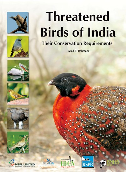 Photos: These are the Most Threatened Birds of India