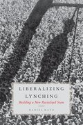 Cover for Liberalizing Lynching